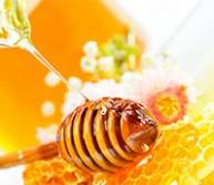 Nasz pszczelarski ślub! Zobacz relację i wyjątkowe zdjęcia!